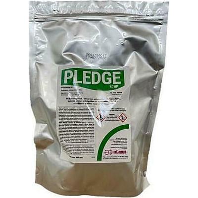 Pledge 50wp 5*80gr